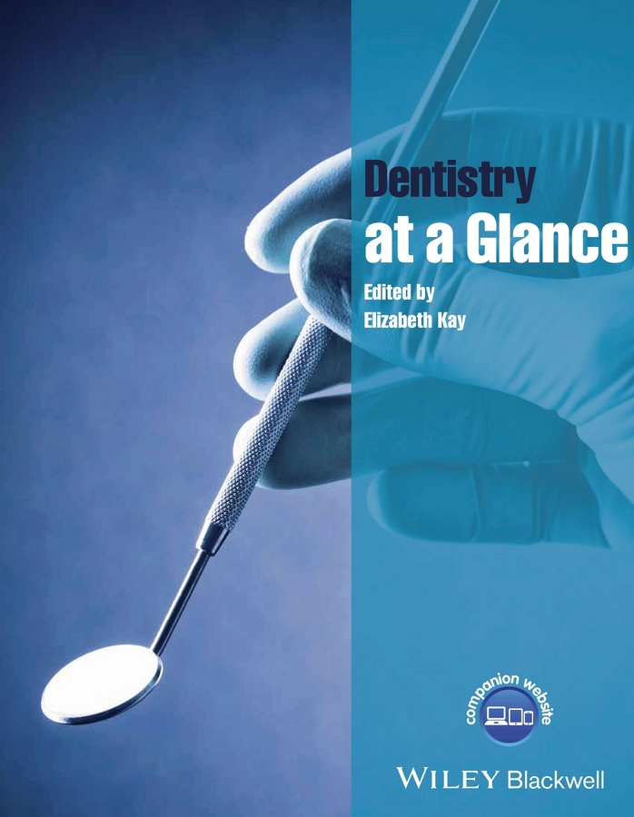 Kay, Elizabeth - Dentistry at a Glance, ebook