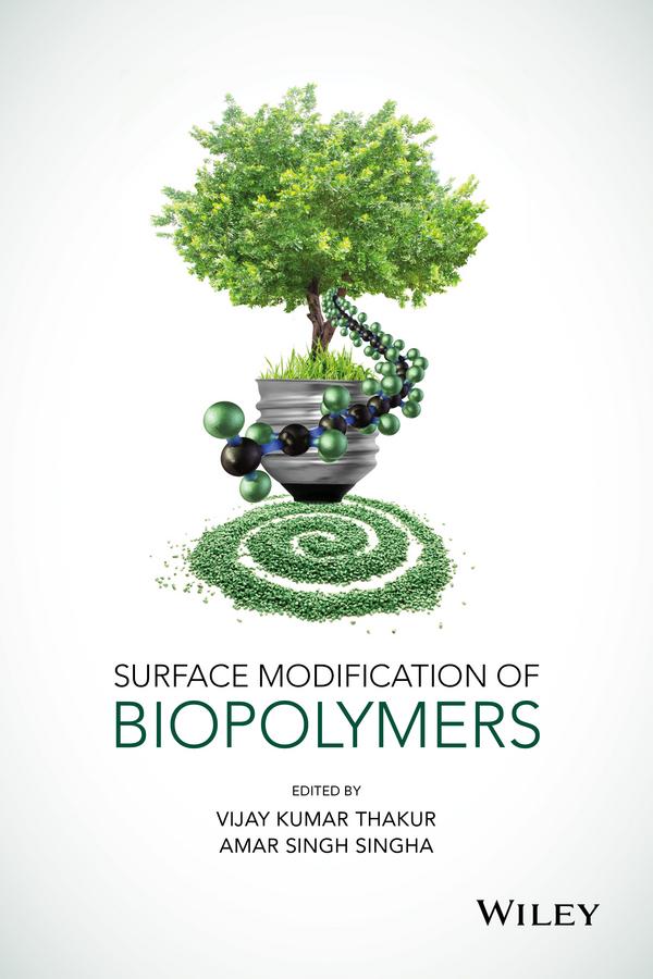 Singha, Amar Singh - Surface Modification of Biopolymers, ebook