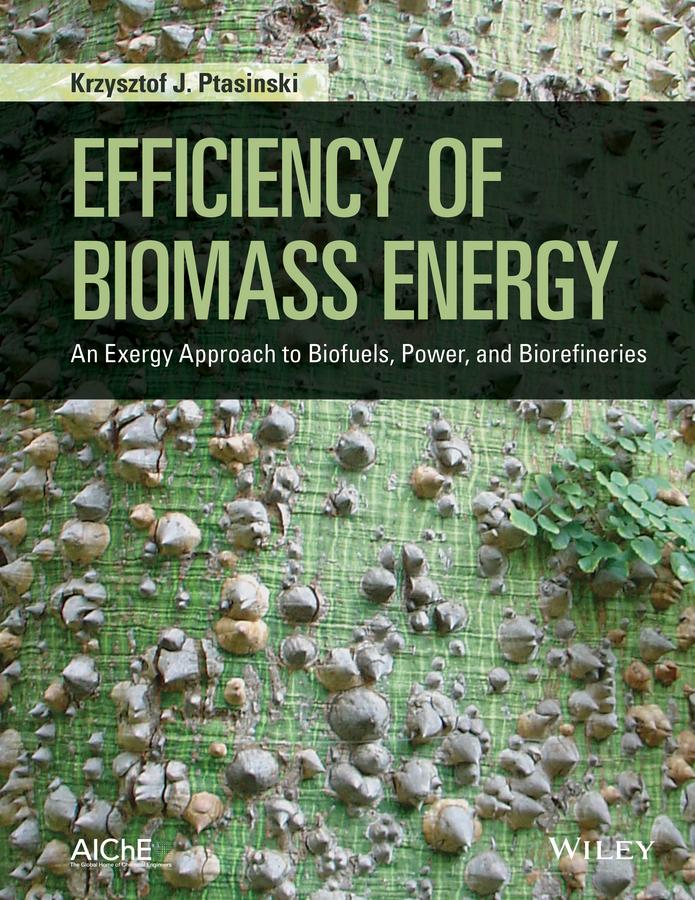 Ptasinski, Krzysztof J. - Efficiency of Biomass Energy: An Exergy Approach to Biofuels, Power, and Biorefineries, ebook