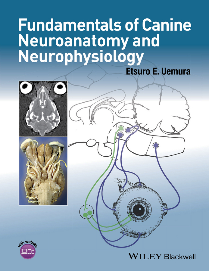 Uemura, Etsuro E. - Fundamentals of Canine Neuroanatomy and Neurophysiology, ebook