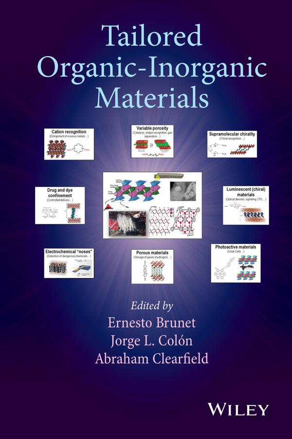Brunet, Ernesto - Tailored Organic-Inorganic Materials, ebook