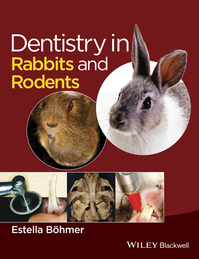 Böhmer, Estella - Dentistry in Rabbits and Rodents, ebook