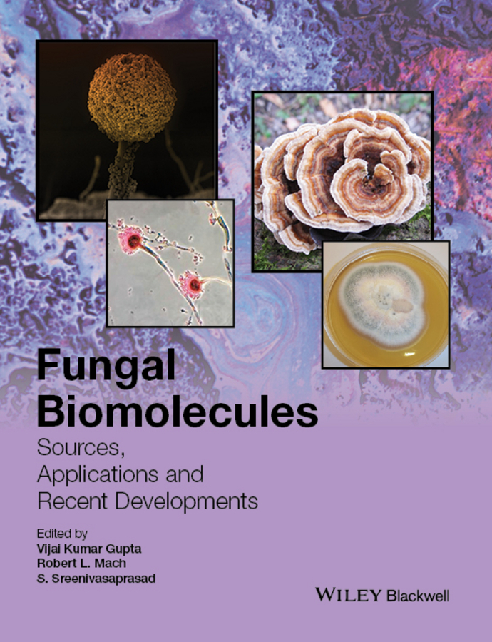 Gupta, Vijai Kumar - Fungal Biomolecules: Sources, Applications and Recent Developments, ebook