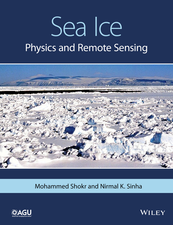Shokr, Mohammed - Sea Ice: Physics and Remote Sensing, ebook