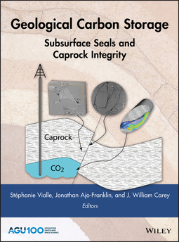 Ajo-Franklin, Jonathan - Geological Carbon Storage: Subsurface Seals and Caprock Integrity, ebook