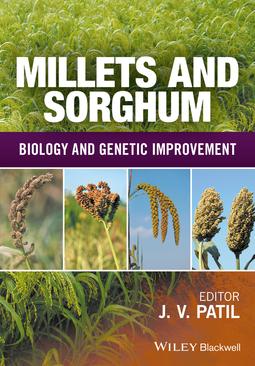 Patil, Jagannath V. - Millets and Sorghum: Biology and Genetic Improvement, ebook