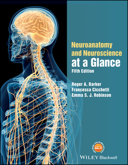 Barker, Roger A. - Neuroanatomy and Neuroscience at a Glance, ebook