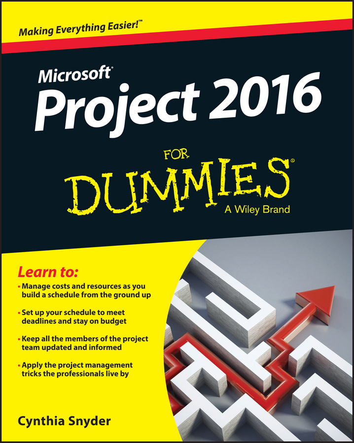 Dionisio, Cynthia Snyder - Project 2016 For Dummies, ebook