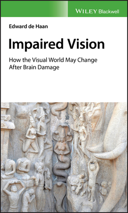 Haan, Edward de - Impaired Vision: How the Visual World May Change after Brain Damage, e-bok
