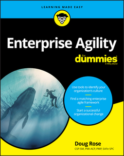 Rose, Doug - Enterprise Agility For Dummies, ebook