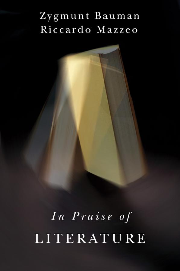 Bauman, Zygmunt - In Praise of Literature, ebook