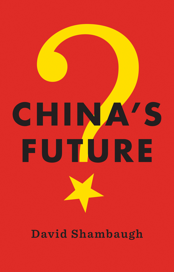 Shambaugh, David - China's Future, ebook