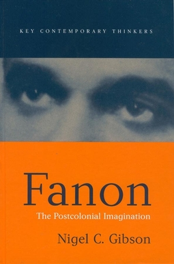 Gibson, Nigel C. - Fanon: The Postcolonial Imagination, ebook