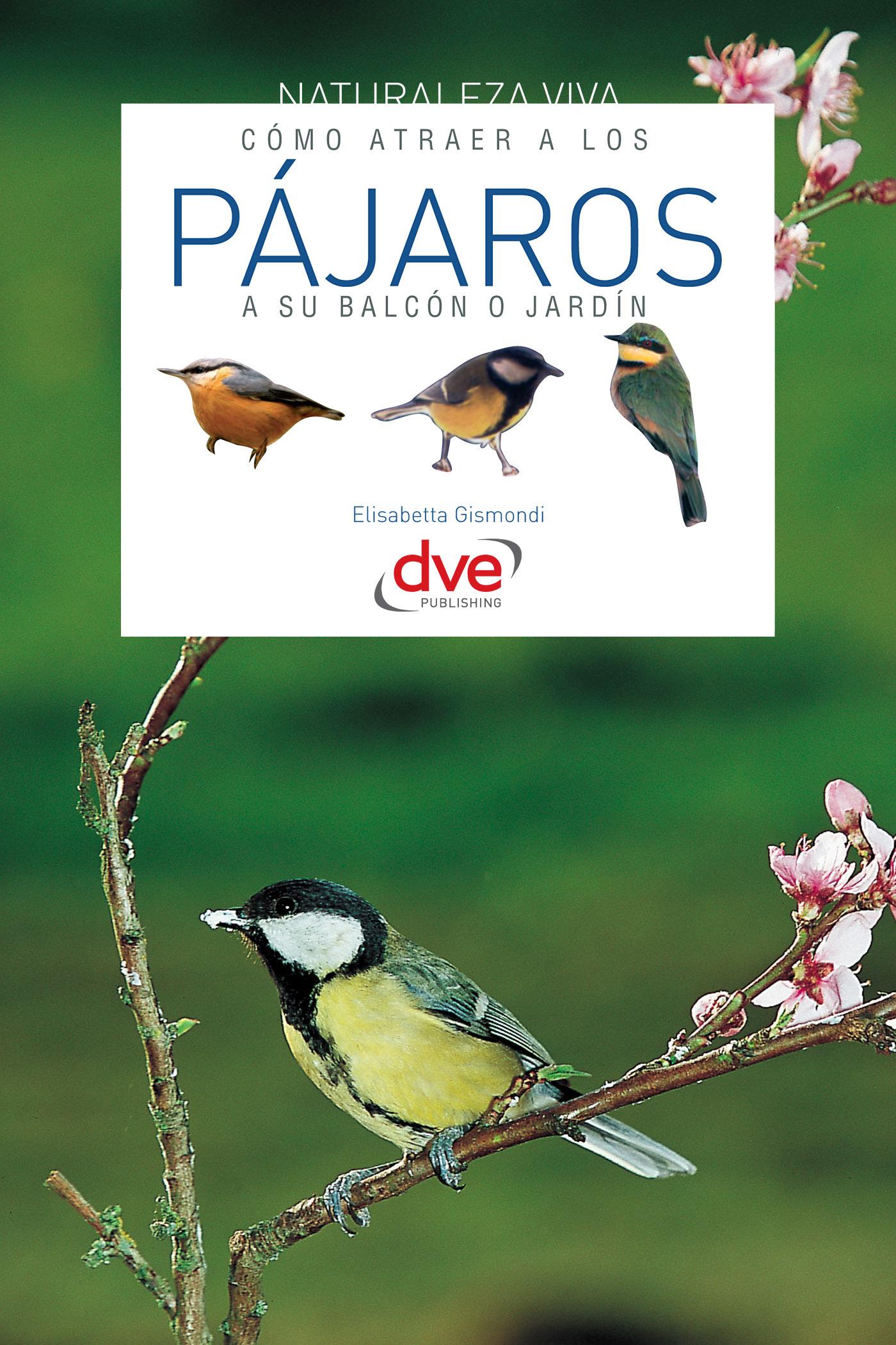Gismondi, E. - Cómo atraer a los pájaros a su balcón o jardín, ebook