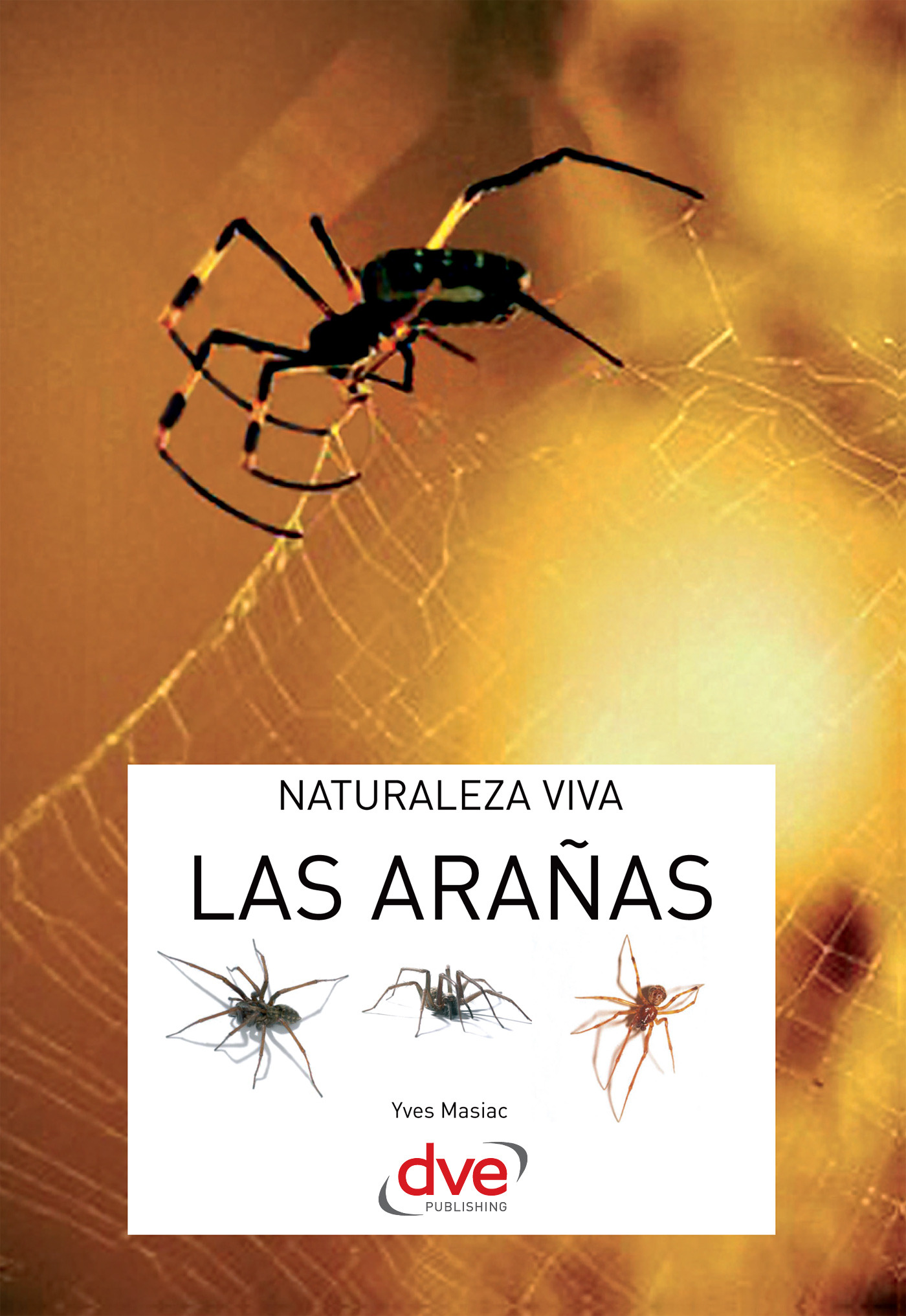 Masiac, Yves - Las arañas, ebook