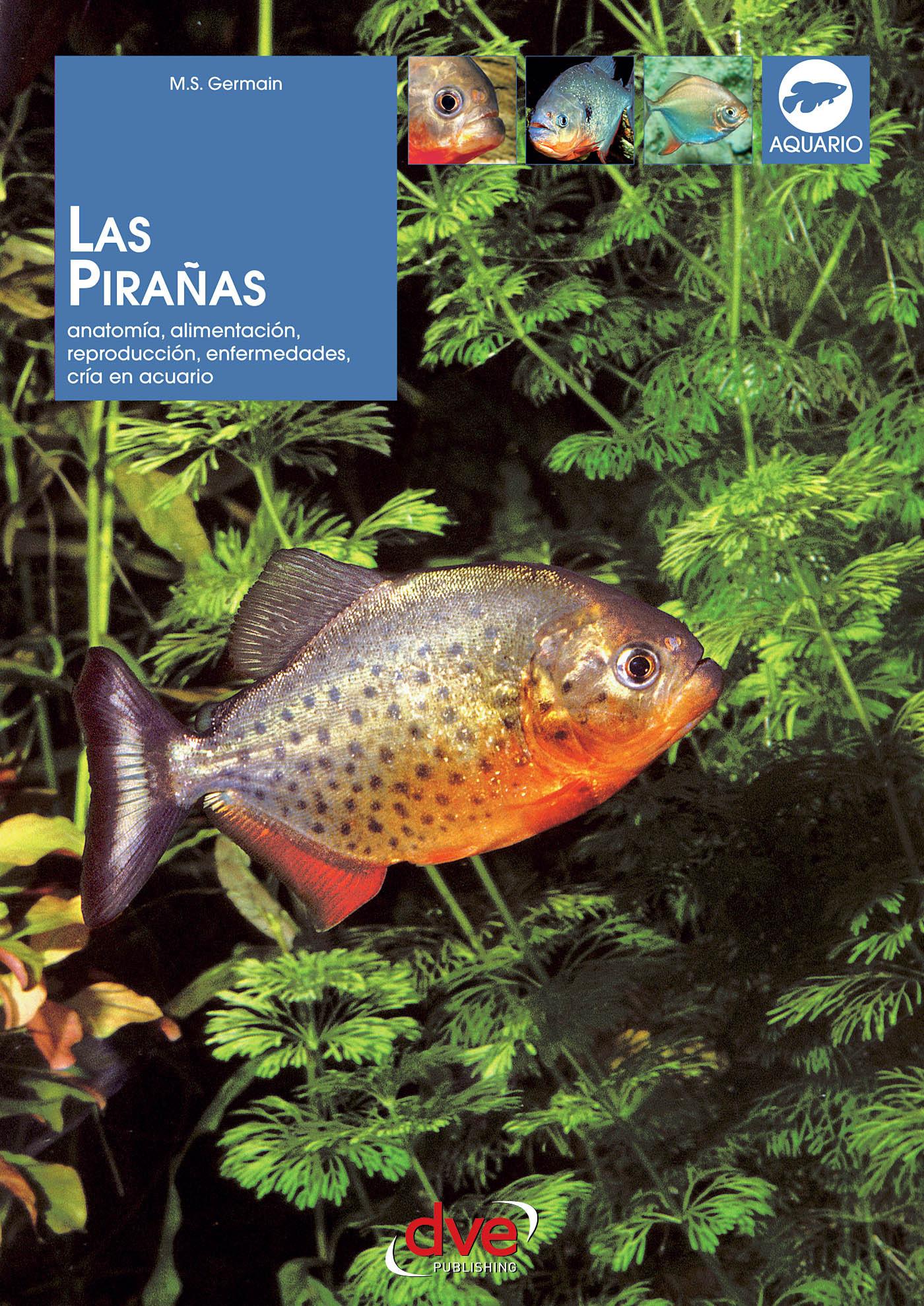 Germain, Marie-Sophie - Las pirañas: Anatomía, alimentación, reproducción, enfermedades, cría en acuario, ebook