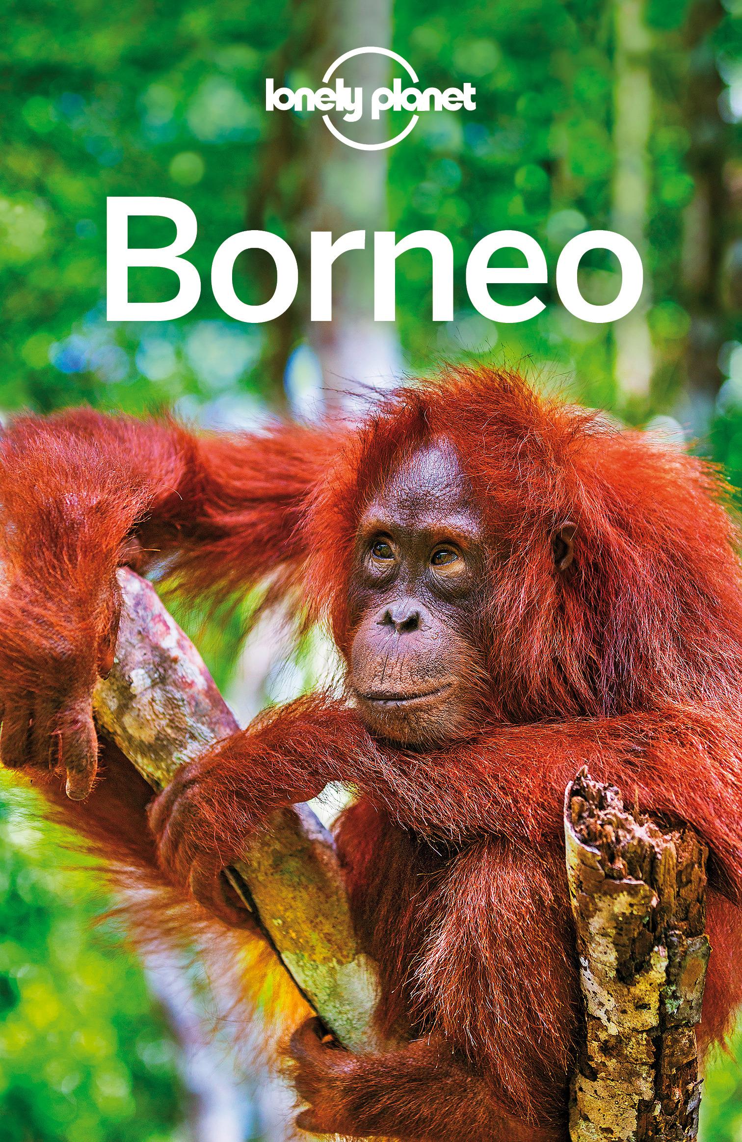 Albiston, Isabel - Lonely Planet Borneo, ebook