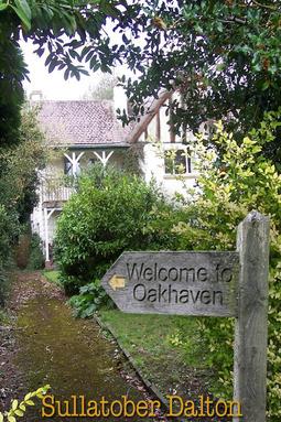 Dalton, Sullatober - Welcome to Oakhaven, ebook