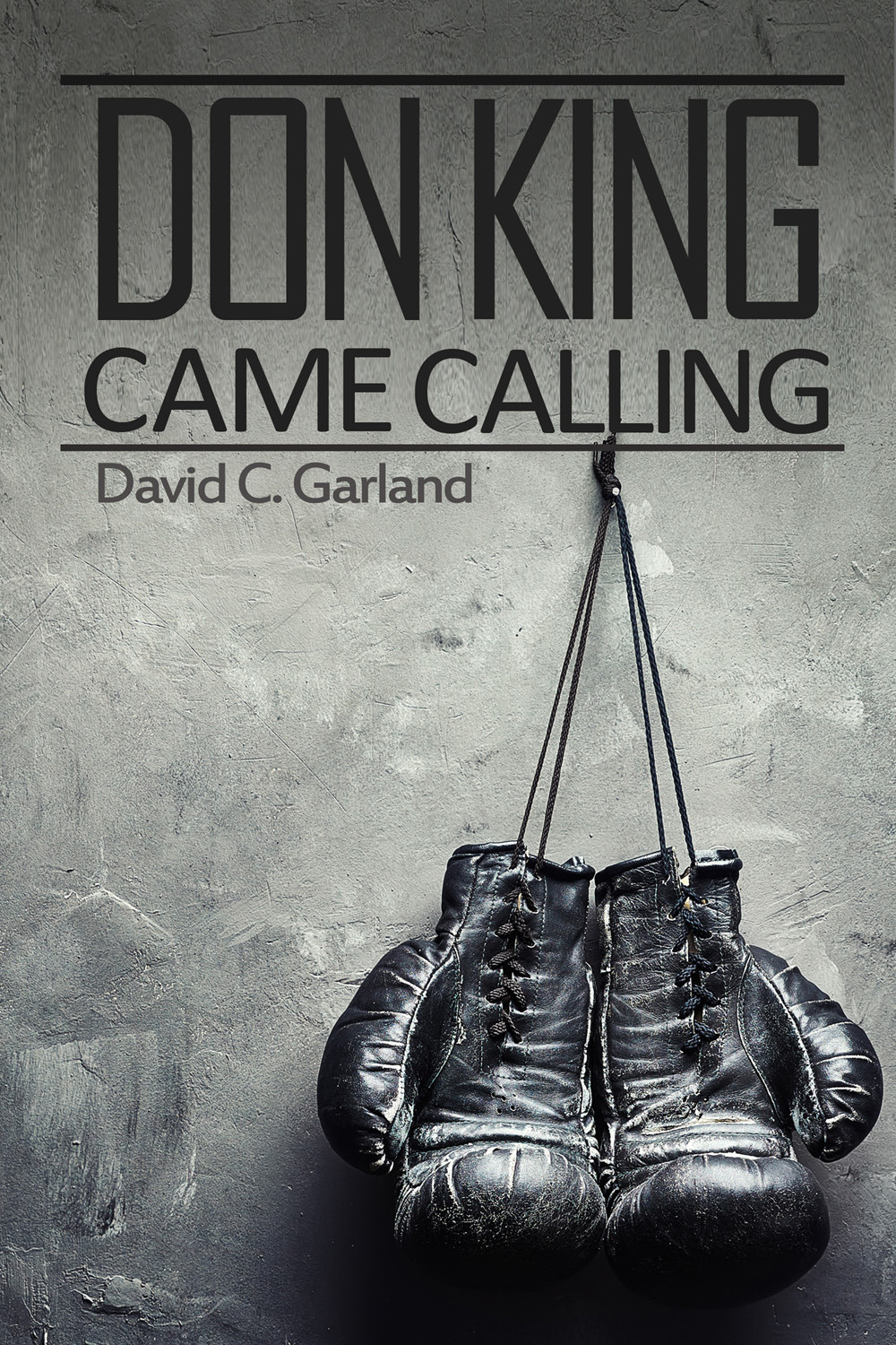 Garland, David C. - Don King Came Calling, ebook