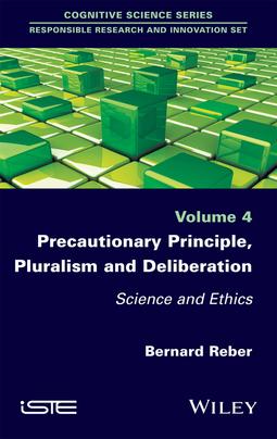 Reber, Bernard - Precautionary Principle, Pluralism and Deliberation: Science and Ethics, e-kirja