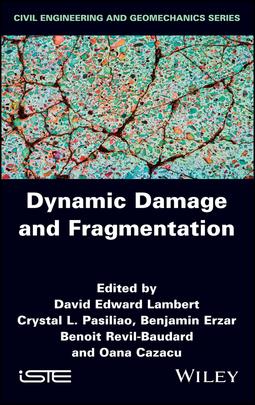 Cazacu, Oana - Dynamic Damage and Fragmentation, ebook