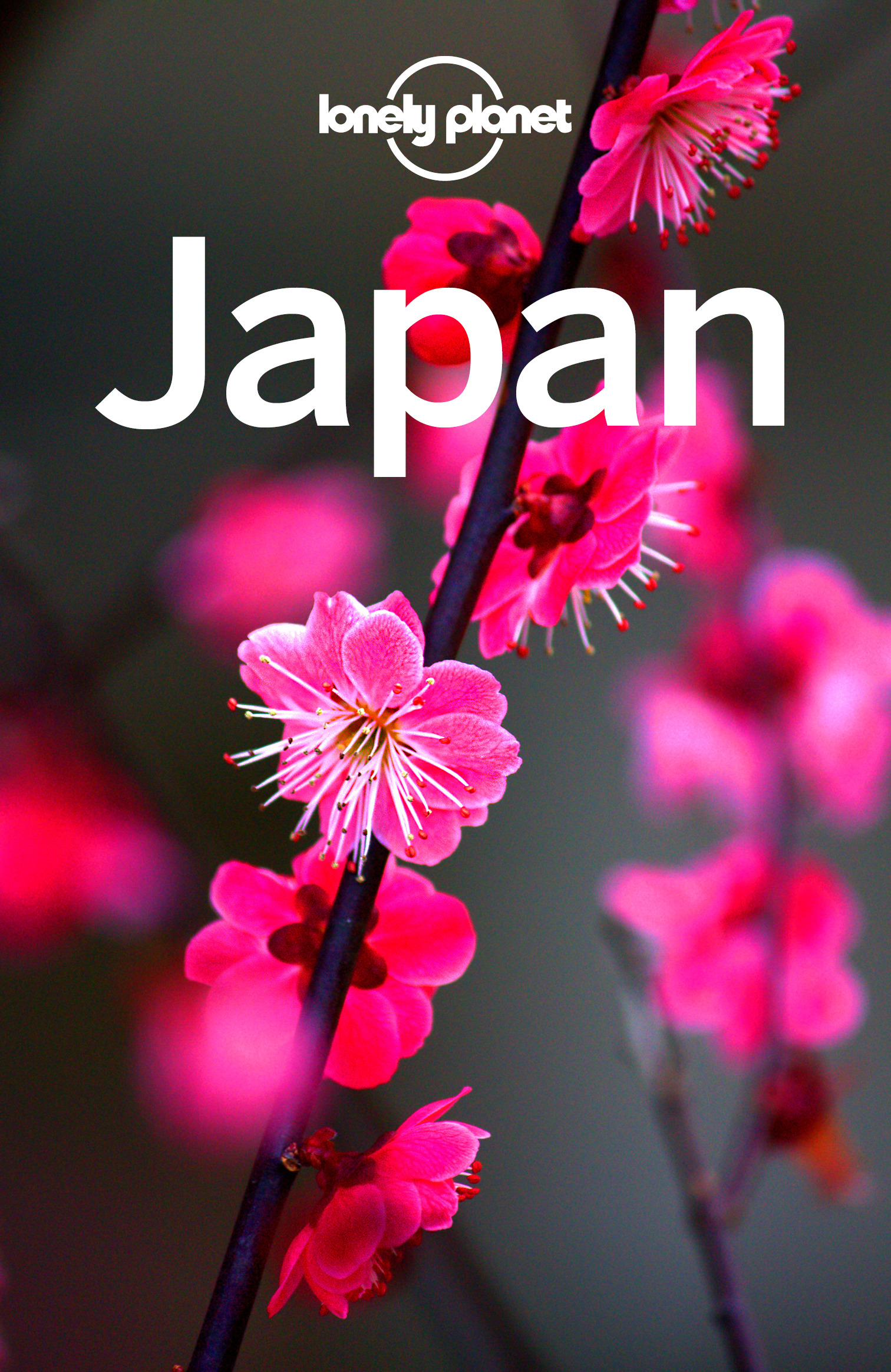Planet, Lonely - Lonely Planet Japan, e-bok