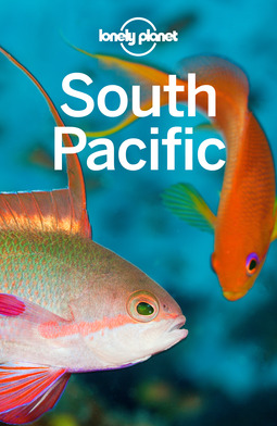 Atkinson, Brett - Lonely Planet South Pacific, ebook