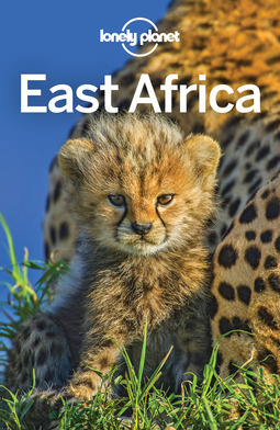 Bartlett, Ray - Lonely Planet East Africa, ebook