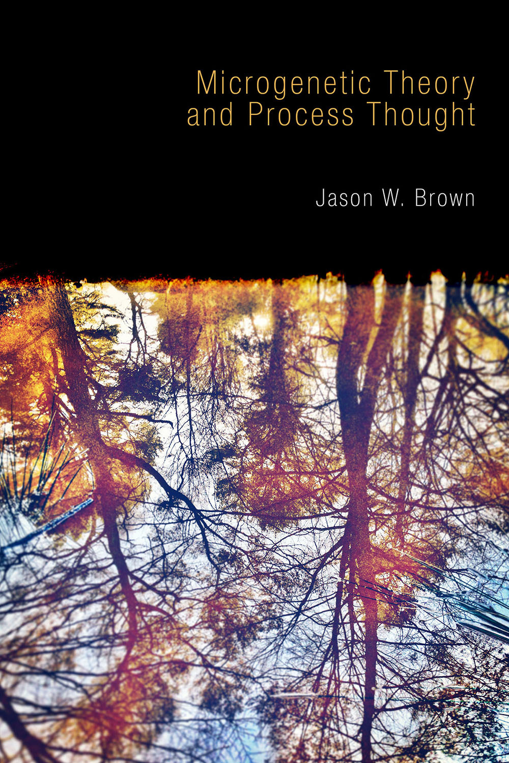 Brown, Jason W. - Microgenetic Theory and Process Thought, ebook