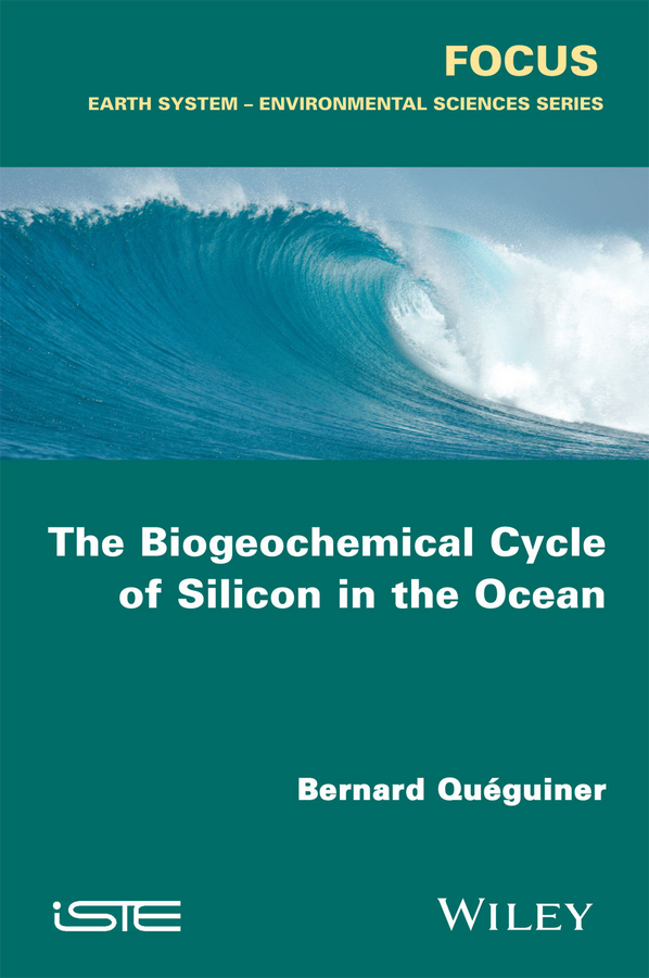 Quéguiner, Bernard - The Biogeochemical Cycle of Silicon in the Ocean, ebook