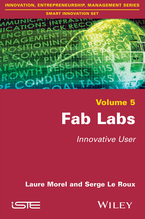 Morel, Laure - Fab Labs: Innovative User, ebook