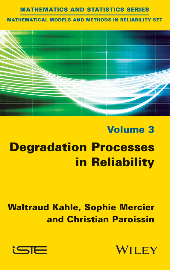 Kahle, Waltraud - Degradation Processes in Reliability, ebook