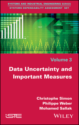 Sallak, Mohamed - Data Uncertainty and Important Measures, ebook