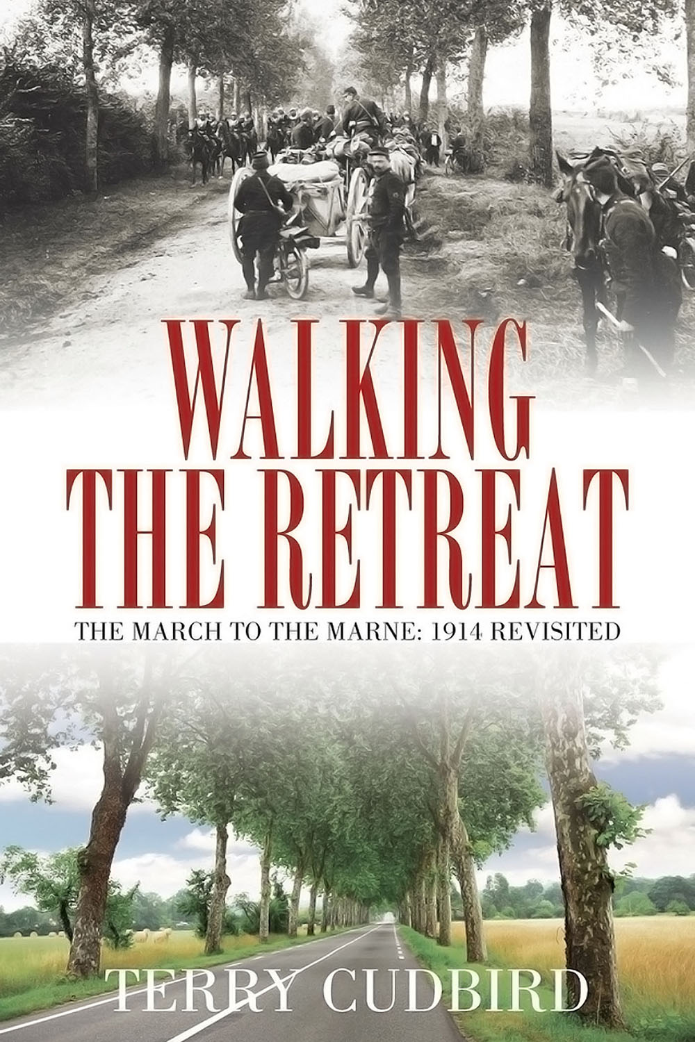 Cudbird, Terry - Walking the Retreat, e-bok