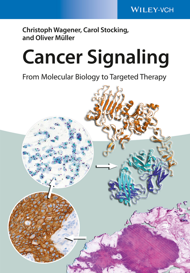 Müller, Oliver - Cancer Signaling, Enhanced Edition: From Molecular Biology to Targeted Therapy, ebook