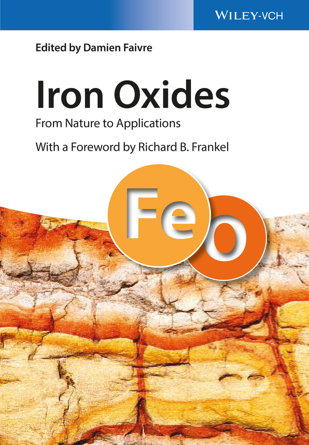 Faivre, Damien - Iron Oxides: From Nature to Applications, ebook