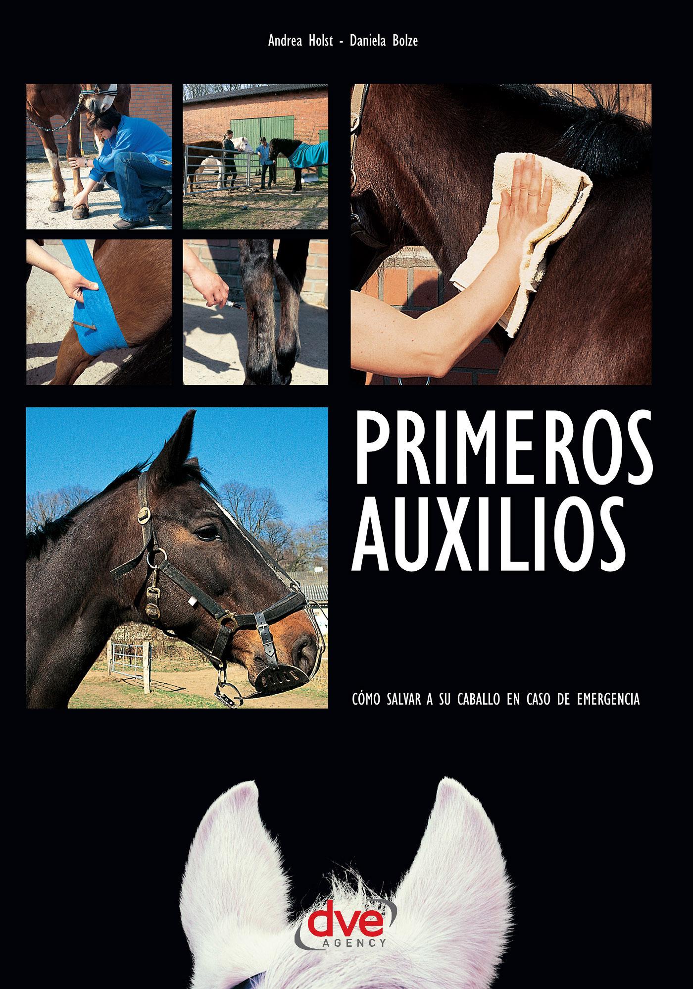 Bolze, Daniela - Primeros auxilios. Cómo salvar a su caballo en caso de emergencia, ebook