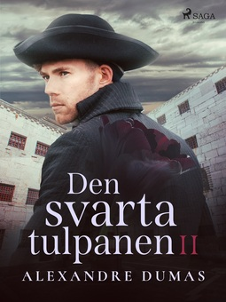 Dumas, Alexandre - Den svarta tulpanen II, ebook