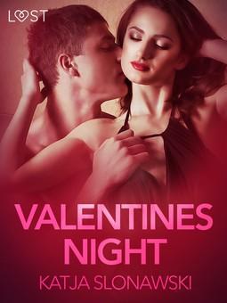 Slonawski, Katja - Valentine's Night - Erotic Short Story, e-kirja