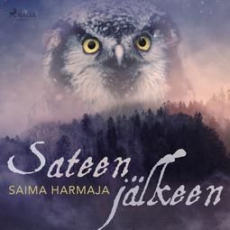 Harmaja, Saima - Sateen jälkeen, äänikirja