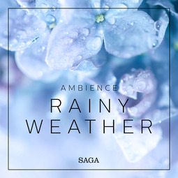 Broe, Rasmus - Ambience - Rainy Weather, audiobook