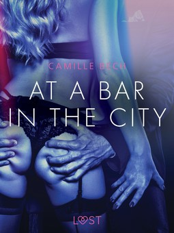Bech, Camille - At a Bar in the City - Erotic Short Story, ebook