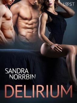 Norrbin, Sandra - Delirium - eroottinen novelli, e-kirja