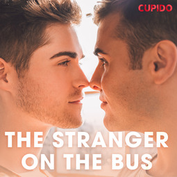 Anderson, Alessandra - The Stranger on the Bus, audiobook