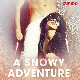 Anderson, Alessandra - A Snowy Adventure, audiobook
