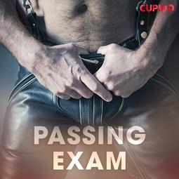 Anderson, Alessandra - Passing Exam, audiobook