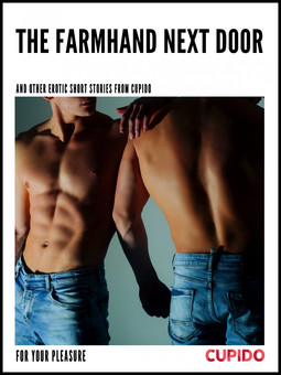 - The Farmhand Next Door - and other erotic short stories, ebook