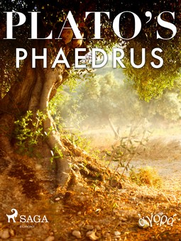 Plato - Plato's Phaedrus, e-bok