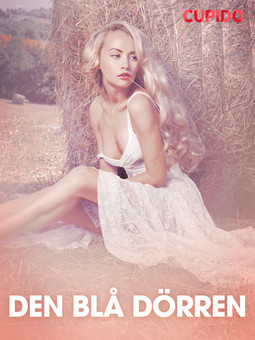 Bohman, Marcus - Den blå dörren - erotiska noveller, ebook
