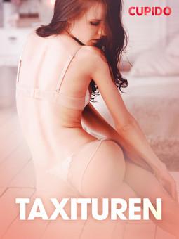 Bohman, Marcus - Taxituren - erotiska noveller, ebook